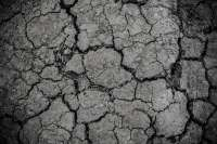 clay soil cracked