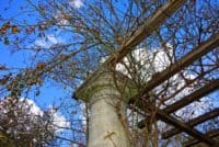 pergola stone pillar