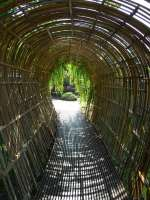 arched bamboo walkway