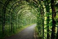garden arbor path arch