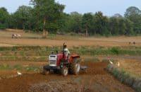 tiller behind tractor