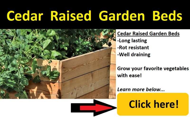 cedar raised garden bed image