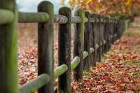 fence with wooden posts