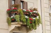 garden box on balcony