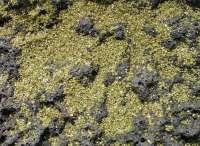 greensand