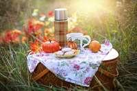 teacup picnic basket