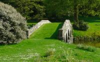 grass bridge