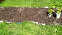 aged manure on cardboard on grass
