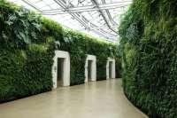 Longwood Gardens green wall living wall