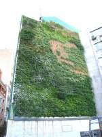 green wall in madrid living wall